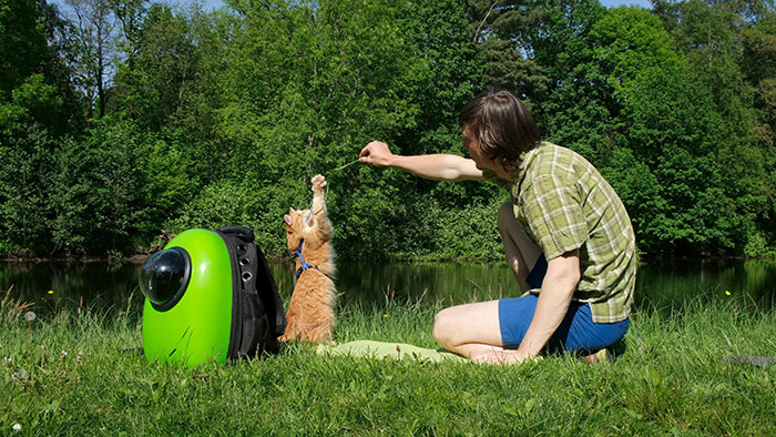 best-cat-backpacks