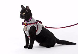 Bestag Cat Harnesses Traction Kit Elegant British Style Jacket with Leash and Collar