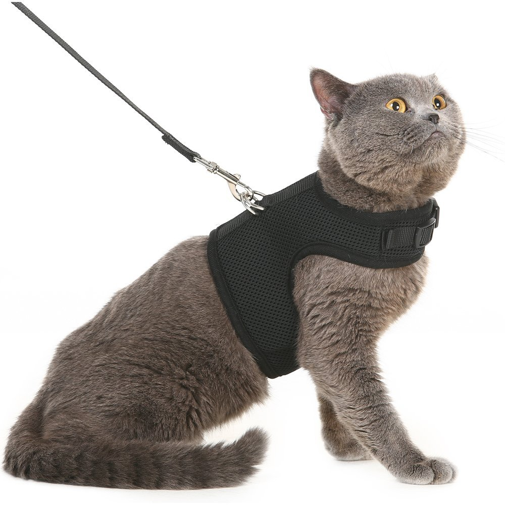 Escape Proof Cat Harness with Leash - Holster Style Adjustable Soft Mesh