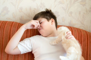 Teen turns due to unpleasant odor from a cat