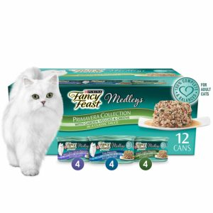 Purina Fancy Feast Gravy Wet Cat Food